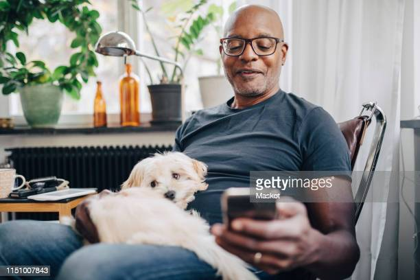 smiling retired senior male using smart phone while sitting with dog in room at home - eén persoon stockfoto's en -beelden