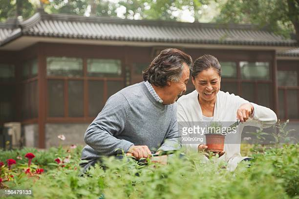 Smiling senior couple in garden