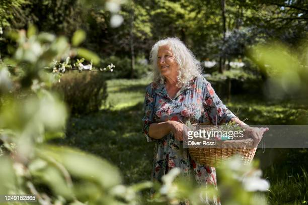 smiling senior woman carrying wicker basket in garden - floral pattern dress stock pictures, royalty-free photos & images