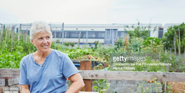 smiling senior woman relaxing in community garden - compassionate eye foundation stock pictures, royalty-free photos & images