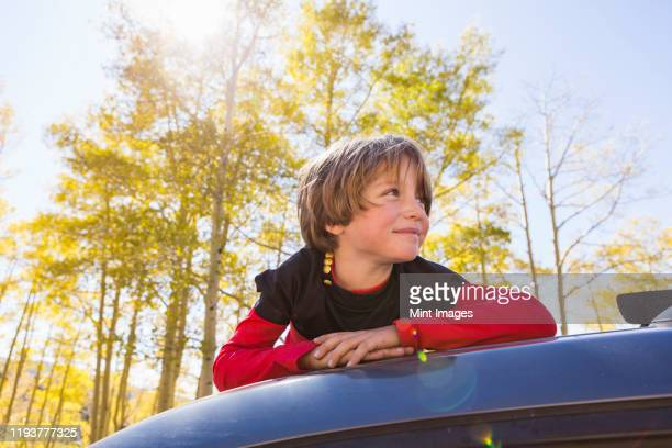 a smiling six year old boy lying on the hood of a blue suv in woodland. - kind im grundschulalter stock-fotos und bilder