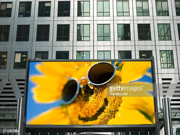 Smiling Sunflower on Billboard, London