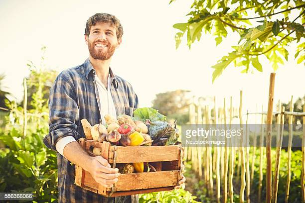 Smiling thoughtful male carrying vegetables in crate at organic