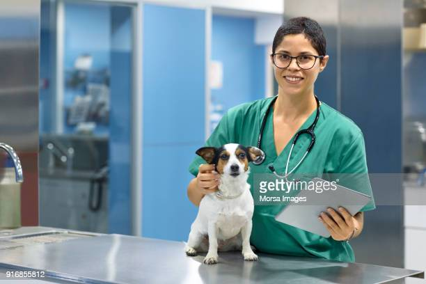 smiling veterinarian with dog and digital tablet - animal hospital stock pictures, royalty-free photos & images