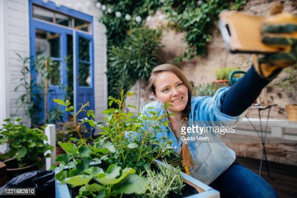 smiling woman doing selfie in front of diy plant pot. - guido mieth stock pictures, royalty-free photos & images