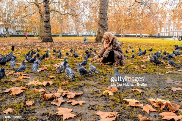 smiling woman feeding pigeons in park during autumn - グロヴナー広場 ストックフォトと画像