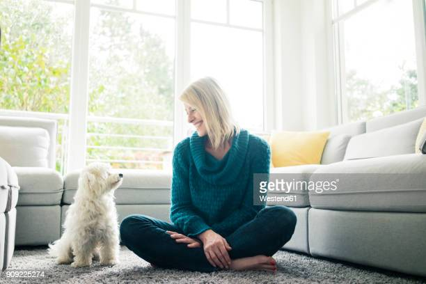 smiling woman looking at her dog in living room - hundeartige stock-fotos und bilder