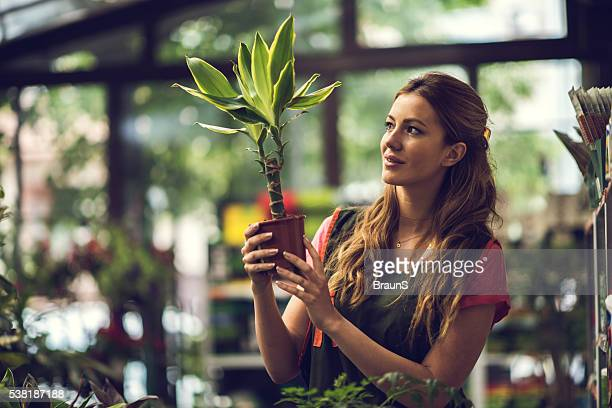 Smiling woman looking at potted plant in a greenhouse.
