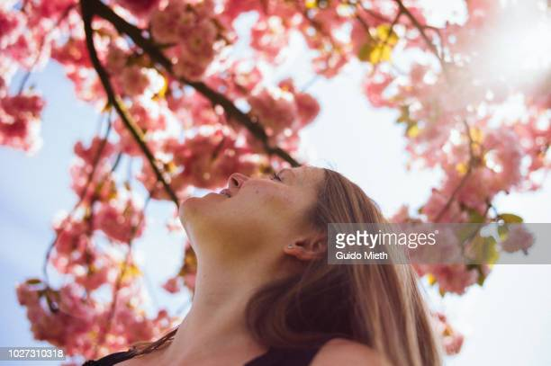 smiling woman looking up to a blooming tree. - springtime stock pictures, royalty-free photos & images