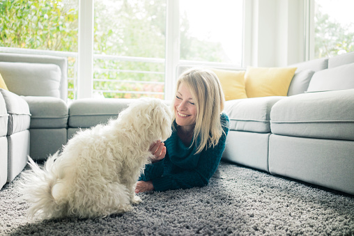 Smiling woman petting her dog in living room - gettyimageskorea