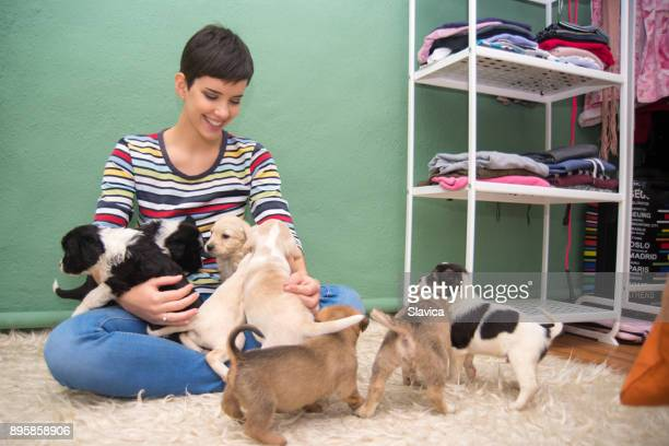 smiling woman playing with puppies - black hairy women stock pictures, royalty-free photos & images