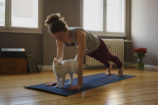 Smiling woman practicing plank position over white cat on exercise mat at home - gettyimageskorea