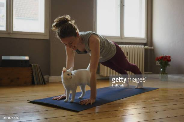 smiling woman practicing plank position over white cat on exercise mat at home - home workout stock pictures, royalty-free photos & images