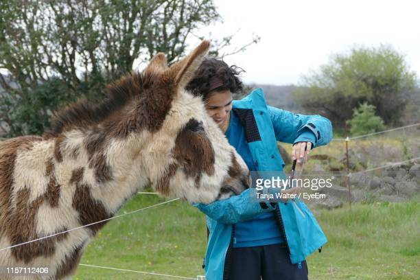 smiling woman taking selfie with donkey in pen - donkey stock pictures, royalty-free photos & images