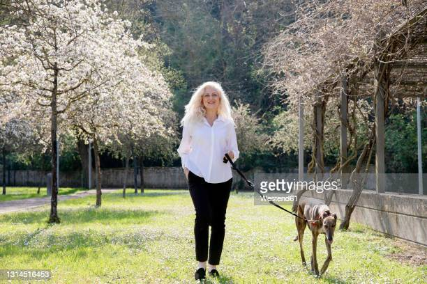smiling woman walking with dog in park on sunny day - long hair stock pictures, royalty-free photos & images