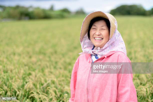 smiling woman wearing straw hat and pink jacket standing in a rice field, looking at camera. - 水田 ストックフォトと画像