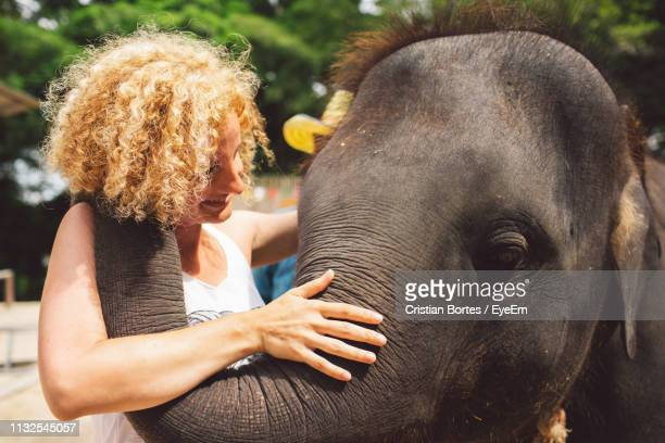 smiling woman with elephant - bortes stock photos and pictures