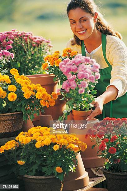 smiling woman with flowers - chrysanthemum stock pictures, royalty-free photos & images