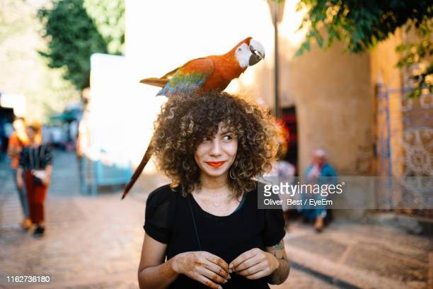 smiling woman with macaw on head at street - femme marocaine photos et images de collection