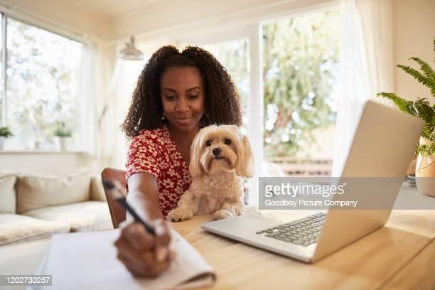 donna sorridente che lavora con il suo cane in grembo - dog pad foto e immagini stock