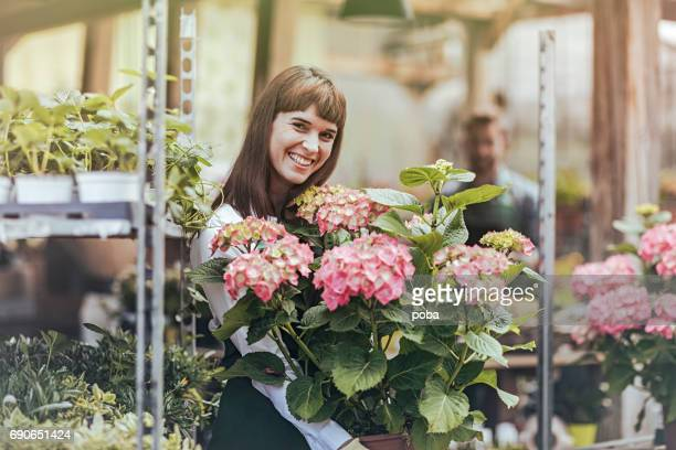 Smiling worker with plant in plant nursery greenhouse