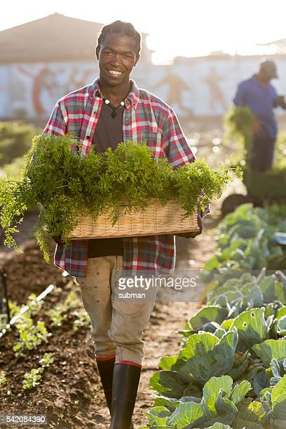 Smiling Young African man holding vegetables Basket