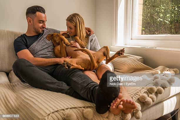 smiling young couple with vizsla dog relaxing on bed at home - men in white socks stock photos and pictures