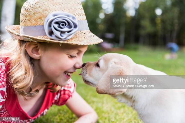 A smiling young girl wearing a sundress and hat has her nose licked by a young Labrador puppy