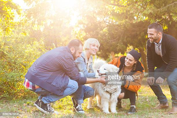 Smiling young people stroking a dog in park