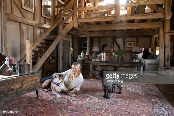 smiling young woman reclining on rug with family dogs - persian rug stock pictures, royalty-free photos & images