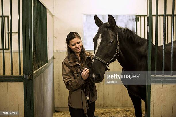 Smiling young woman with horse in stable