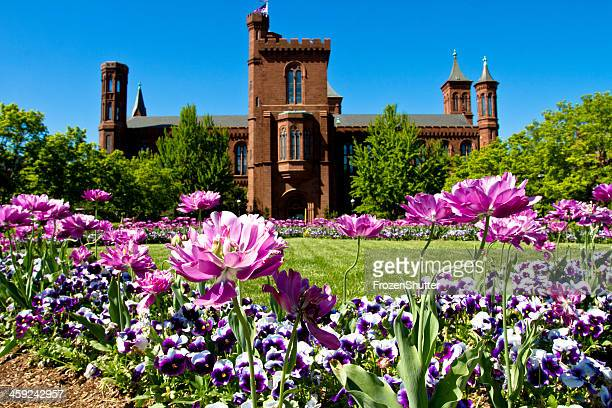 smithsonian institution castle garden - magic doors stock pictures, royalty-free photos & images