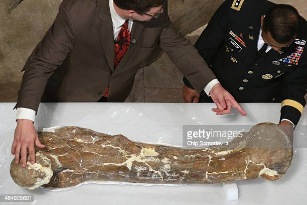Smithsonian National Museum of Natural History Director Kirk Johnson and US Army Corps of Engineers Lt Gen Thomas Bostick look closely at the...