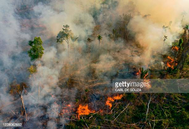 Smoke and flames rise from an illegally lit fire in Amazon rainforest reserve, south of Novo Progresso in Para state, Brazil, on August 15, 2020.
