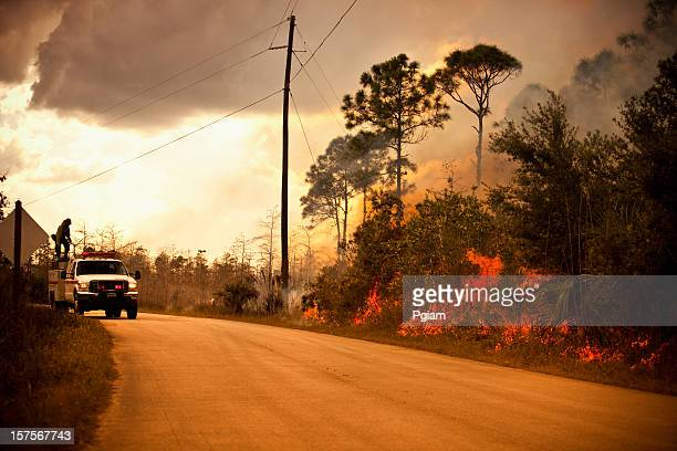 smoke and wilderness emergency truck - slash and burn stock pictures, royalty-free photos & images