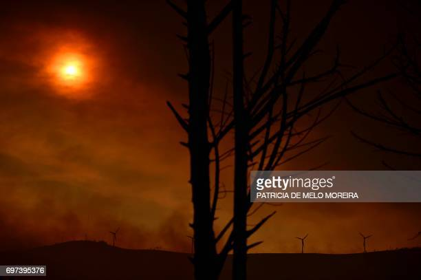 Smoke billows in a devastated area after a wildfire in Figueiro dos Vinhos on June 18, 2017. Portugal declared three days of national mourning from...