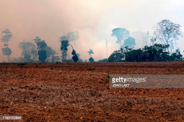TOPSHOT A smoke cloud is seen over a burnt area after a fire in the Amazon rainforest in Novo Progresso Para state Brazil on August 24 2019 President...