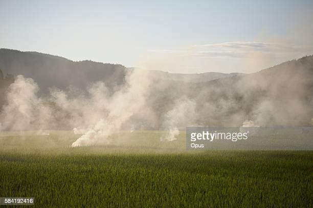 Smoke Over a Rice Paddy Field With Mountains Beyond. Gifu Prefecture, Japan