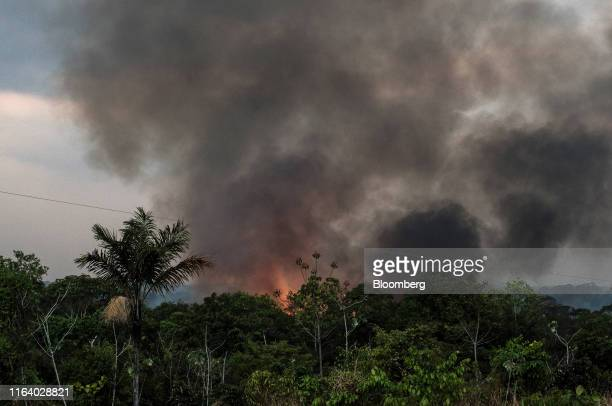 Smoke rises during a fire close to the Madeira River in the Amazon rainforest near Porto Velho Rondonia state Brazil on Sunday Aug 25 2019 The...