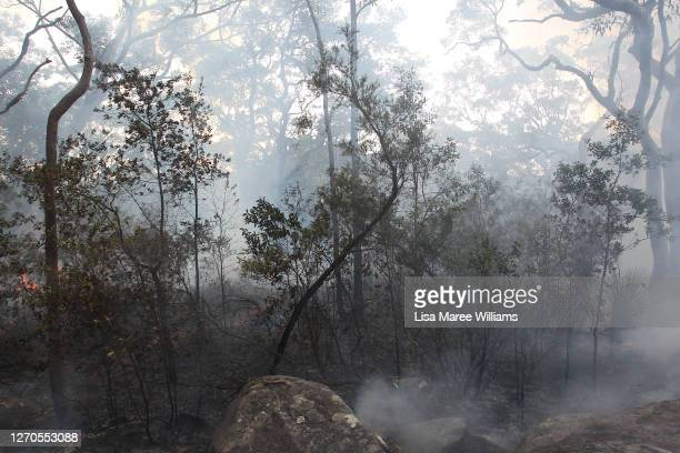 Smoke rises from the bushland during hazard reduction burn at Bowen Mountain on September 04, 2020 in Sydney, Australia. The operation united NSW...