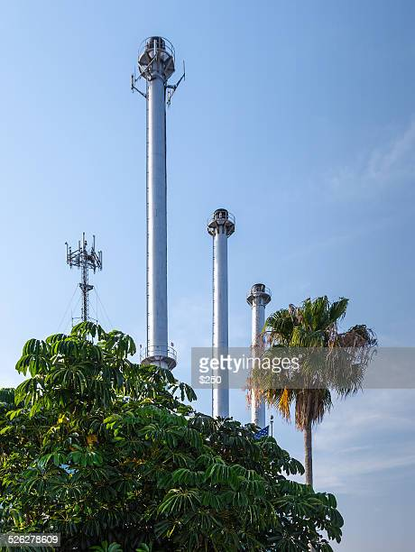 smoke stacks and trees - queensland umbrella tree stock pictures, royalty-free photos & images