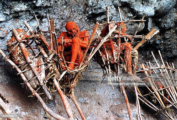 smoked bodies - papua new guinea stock pictures, royalty-free photos & images