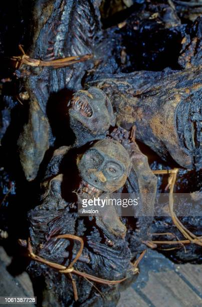 Smoked primates packaged for transport on Congo River Boat Democratic Republic of Congo Date