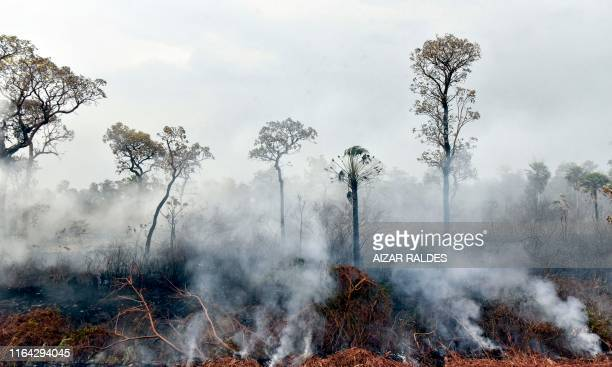 Smokes rises from forest fires in Otuquis National Park, in the Pantanal ecoregion of Bolivia, southeast of the Amazon basin, on August 26, 2019. -...