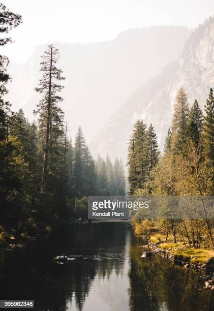 Smokey golden hour in Yosemite