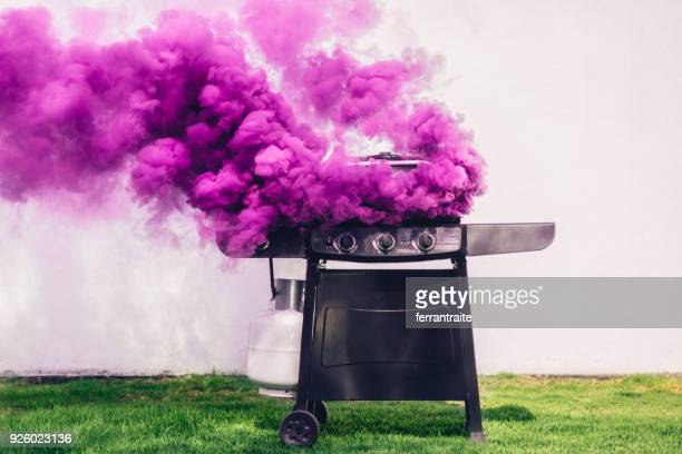 smoking barbecue - mexican picnic stock pictures, royalty-free photos & images