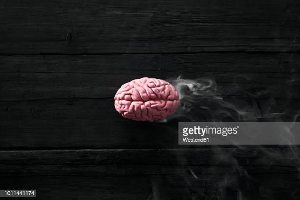 smoking brain, burnout - esgotamento psicológico imagens e fotografias de stock