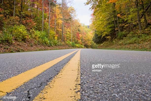 smoky mountain autumn roads series (xxl) - low stock pictures, royalty-free photos & images