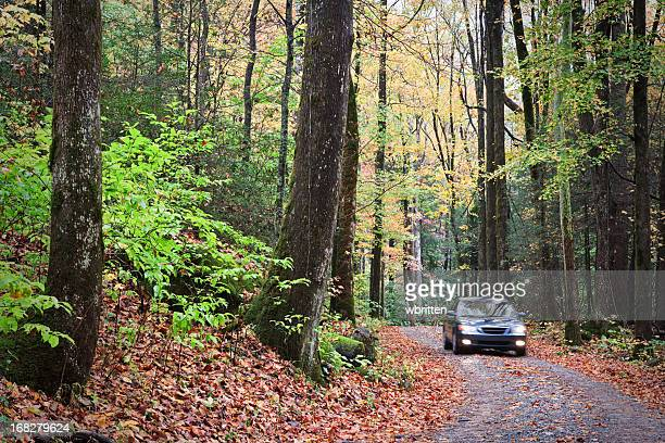 Smoky Mountain Autumn Roads Series