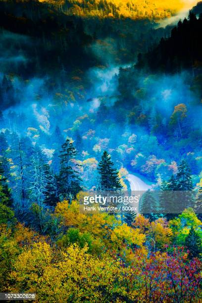 smoky mountain grandeur - hank vermote stock pictures, royalty-free photos & images